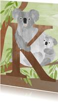 K van koala letterkaart