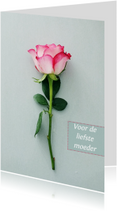 Kaart roos
