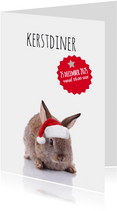 Kerstdiner konijntje met kerstmuts