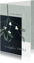 Kerstkaart 2021-2022, met Mistletoe in waterverf