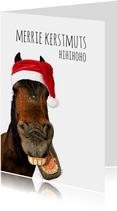 Kerstkaart lachend paard met kerstmuts