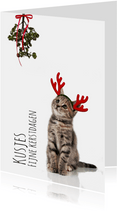 Kerstkaart poesje met maretak