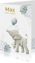 Lief olifantje op botanisch geboortekaartje jongen