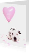 Liefde kaart - Hond hart ballon