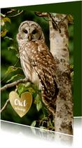 Liefde kaart uil Owl always love you - gouden hart