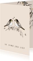 Liefde kaart vogels