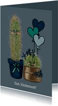 Lieve felicitatiekaart geboorte kleinzoon met cactussen