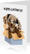Lieve puppy verjaardagskaart voor kind