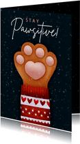 Lieve Stay Pawsitive kerstkaart kattenpootje & kersttrui