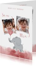 Lieve uitnodiging kinderfeestje voor tweeling met olifantje