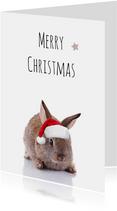 Lustige Weihnachtskarte Hase mit Weihnachtsmütze