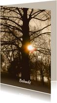 Mooie rouwkaart met stoere oude boom en ondergaande zon
