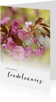 Oprechte Condoleances roze prunus