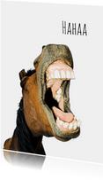 Paard met een lach-isf