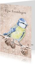 Pimpelmeesje in de sneeuw