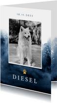 Rouwkaart hond stijlvol verf goud foto hondenpootje