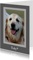 Rouwkaart huisdier - grijs met foto