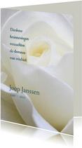 rouwkaart roos staand