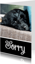Sorry kaart hond