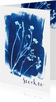 Sterkte kaart geplukte bloemen blauw