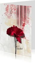 Sterkte kaart klaproos poppy bloem