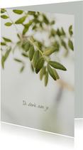Sterktekaart olijftak natuurlijk