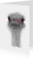 Kunstkaarten - Struisvogel KunstAnders