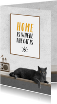 Uitnodiging Home is where the cat is