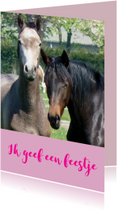Uitnodiging Kinderfeestje paarden