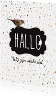 Verhuiskaart  Hallo  confetti-  LO