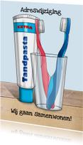 Verhuiskaart samenwonen met tandenborstels samen