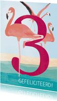 Verjaardag flamingo 3 jaar