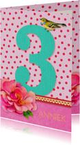 Verjaardag Meisje 3