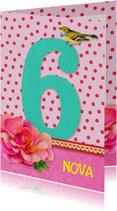 Verjaardag Meisje 6 roze