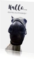 Verjaardagskaart grappig paard