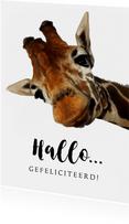 Verjaardagskaart grappige giraf