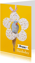Verjaardagskaart - Happy Birdsday