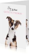 Verjaardagskaart - Hey jij daar gefeliciteerd - hond