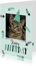 Verjaardagskaart kat happy birthday visjes feestmuts foto