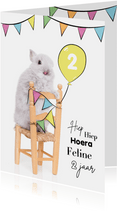 Verjaardagskaart - Konijntje op stoel met vlaggetjes