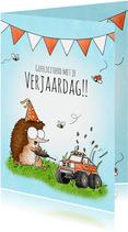 Verjaardagskaart met egeltje en een bestuurbare auto