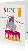 Verjaardagskaart olifant hoera feest jongen meisje