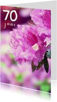 Verjaardagskaart rhododendron 70