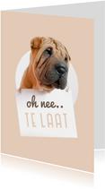 Verjaardagskaart te laat hond met bordje