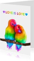 Vriendschap kaart Love is Love rainbow lovebirds