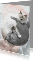 Vriendschapskaart Yin & Yang