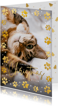 Weihnachtskarte Foto & Katzenpfoten