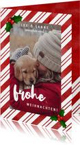 Weihnachtskarte rote & weiße Streifen, Foto und Stechpalme