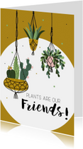 Woonkaart: Plants are our friends