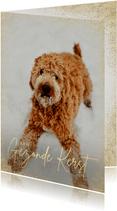 Zakelijke kerstkaart stijlvol grote foto hond gezonde kerst